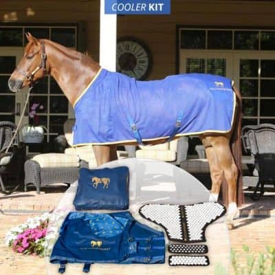 Horse Acupressure Blanket Kit