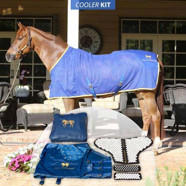 Horse Acupressure Blanket Kit