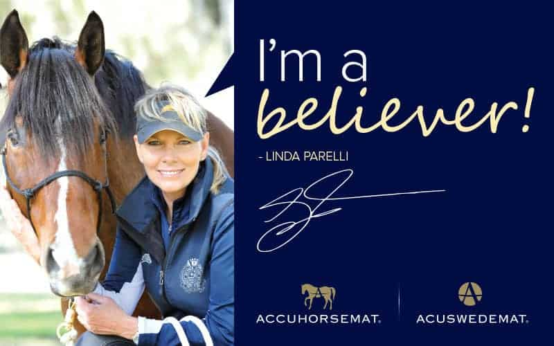 Linda Parelli Believes in Acupressure for Horses…and People